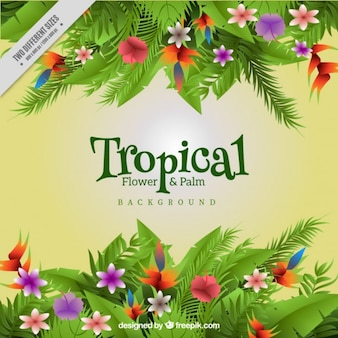Colored tropical flowers and leaves background