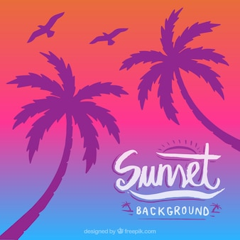 Colorful background with silhouette of palm trees and birds