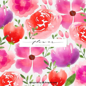 Colorful background with watercolor flowers