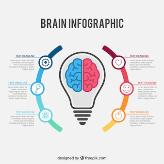 Colorful brain infographic template