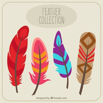 Colorful feathers collection