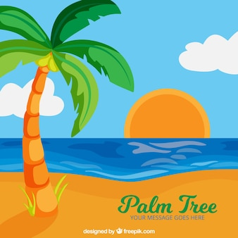 Colorful sunset with palm tree background