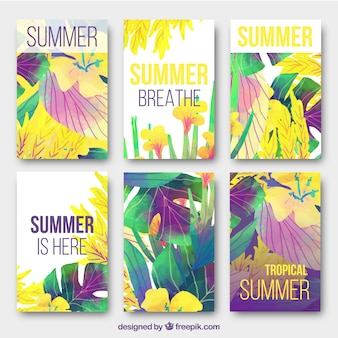 Colorful tropical summer cards collection