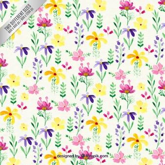 Красочные акварель цветы фон