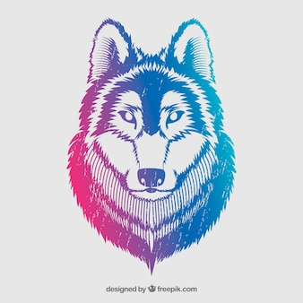 Colorful wolf in grunge style