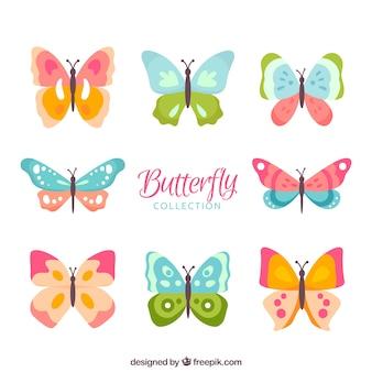 Colors kinds of butterflies