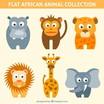 Coloured african animal collection