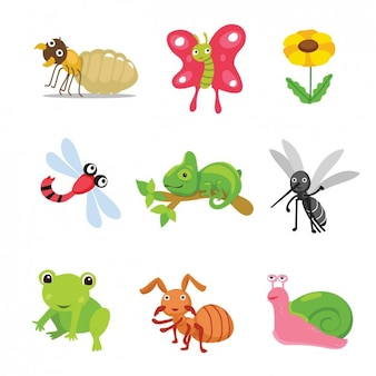 Coloured animals and insects collection