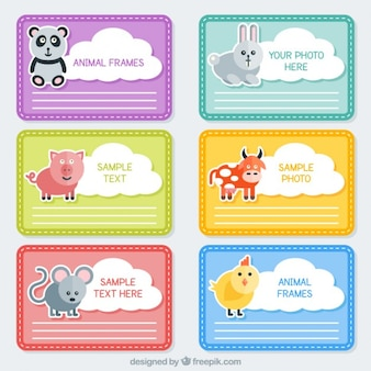Coloured animals frames