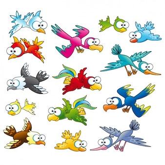 Coloured birds collection