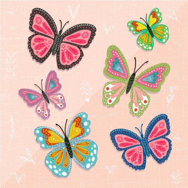 Coloured butterflies collection