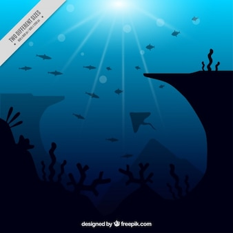 Coloured diving background