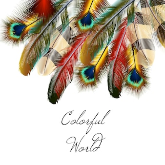 Coloured feathers background