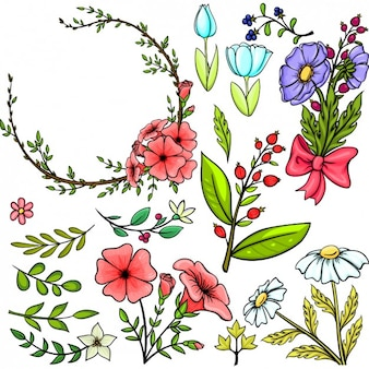 Coloured floral elements