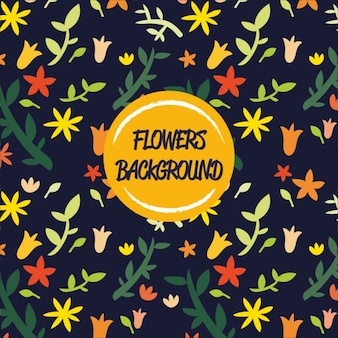 Coloured flowers background