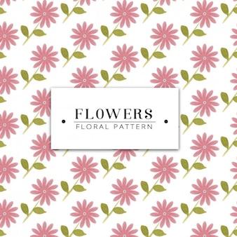 Coloured flowers pattern design