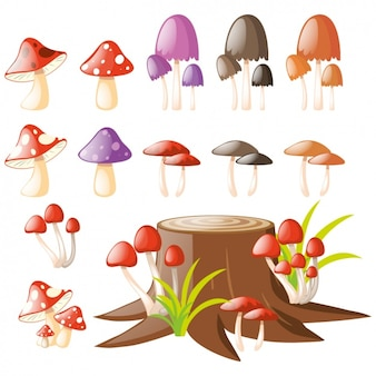 Coloured mushrooms collection
