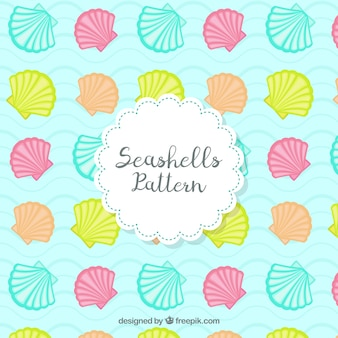 Coloured seashells patterns