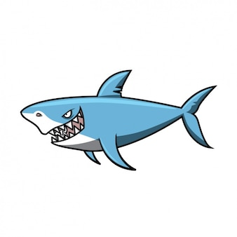 Coloured shark design