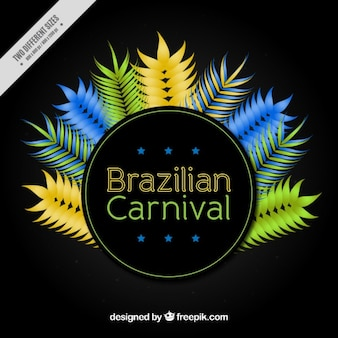 Colourful feathers brazilian carnival background