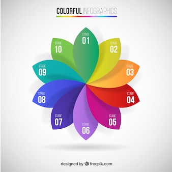 Colourful petals infographic