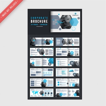 Corporate brochures with blue elements