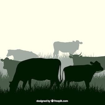 Корова силуэты