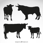 Cows and bull silhouettes