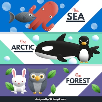 Cute animal banners pack