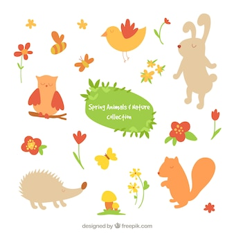 Cute animals and flowers