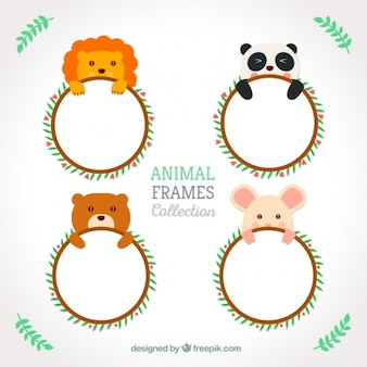 Cute animals rounded frames