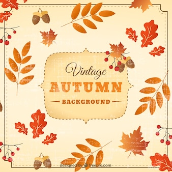 Cute autumn background with vintage style