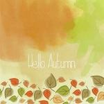 Cute autumnal background