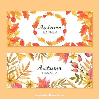 Cute banners of autumnal nature
