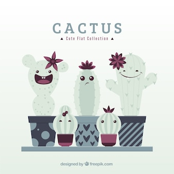 Cute cactus collection