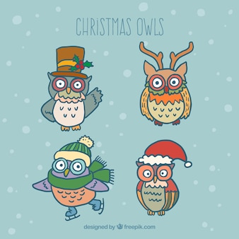 Cute christmas owls collection