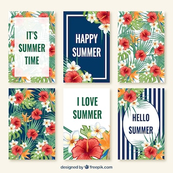 Cute collection cards of summer