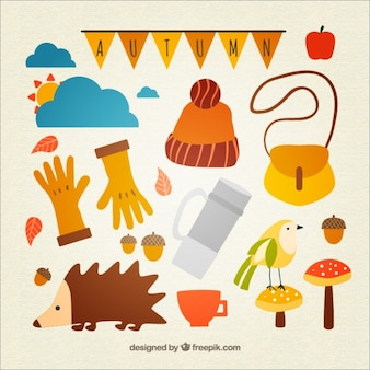 Cute collection of autumnal elements