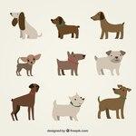 Cute dogs illustration