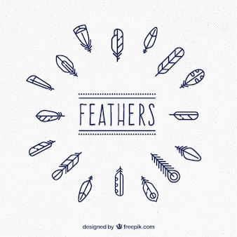 Cute feathers collection