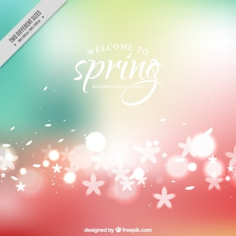 Cute flowers spring burred background