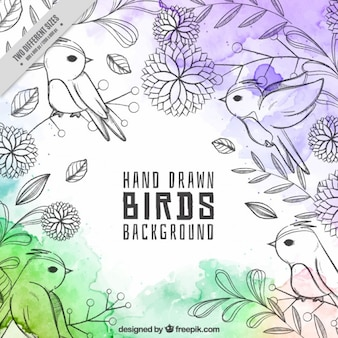 Cute hand drawn birds background with watercolor stains