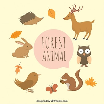 Cute hand drawn forest animals with leaves
