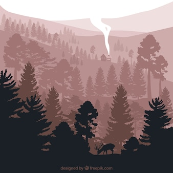 Cute landscape with pine silhouettes