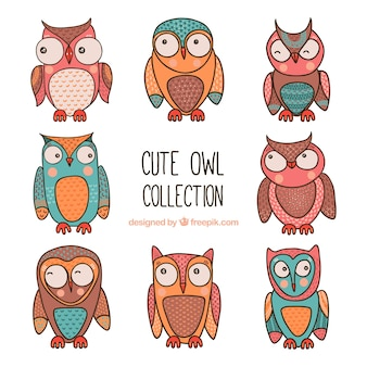 Cute pack of colored owls