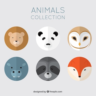 Cute pack of round animals