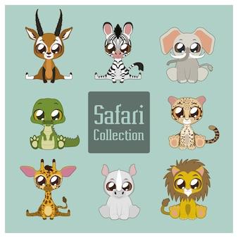 Cute safari collection