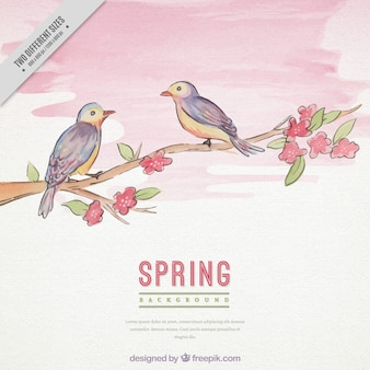 Cute spring background with birds on branch