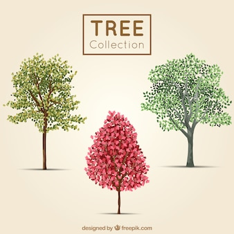 Cute trees in realistic style