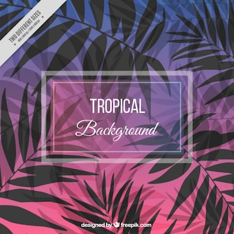 Cute tropical background with palm leaves